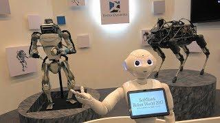 【4K】「SoftBank Robot World 2017」2017.11.21 @東京・ベルサール汐留