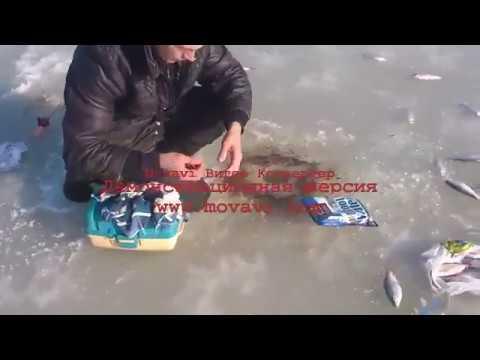 рыбалка на море прикормка