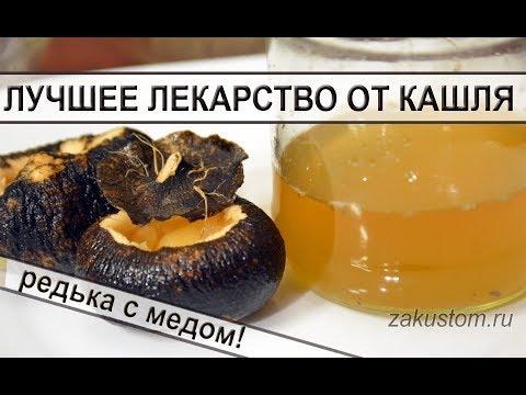 Лучшее средство от кашля для детей и взрослых - черная редька с медом