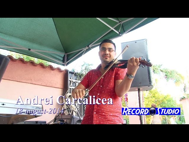 Andrei Carcalicea LIVE (colaj SARBA instrumentala) 18-08-2014 dupa nunta Adrian si Andreea