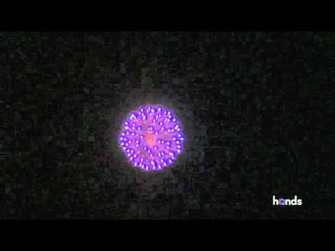 L31044 - PURPLE to CRACKLING PEONY