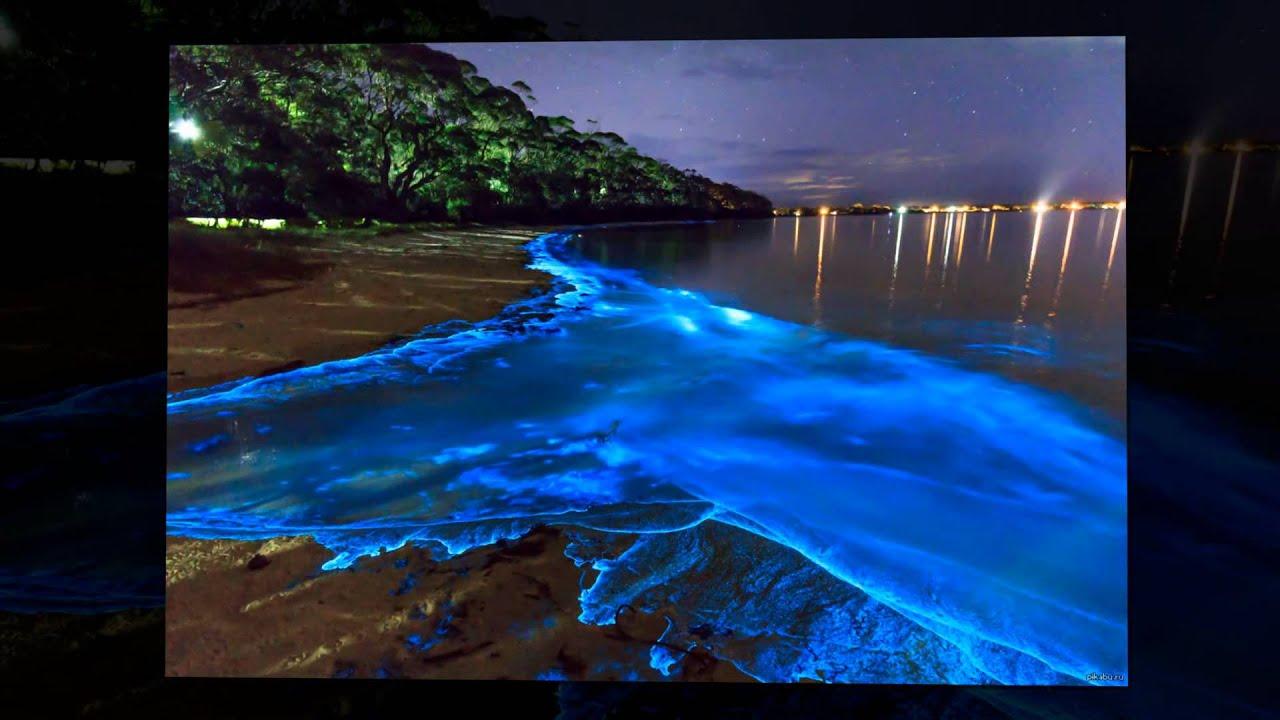 Мальдивы светящийся пляж фото