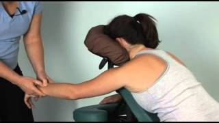 Chair Massage Techniques with Susan Salvo