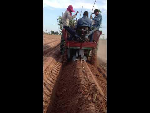 เครื่องปลูกมันสำปะหลัง cassava planter version 1