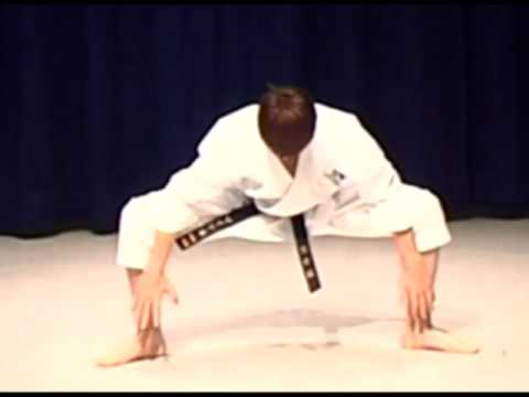 Shotokan Karate Kata The Warm Up And Stretch video
