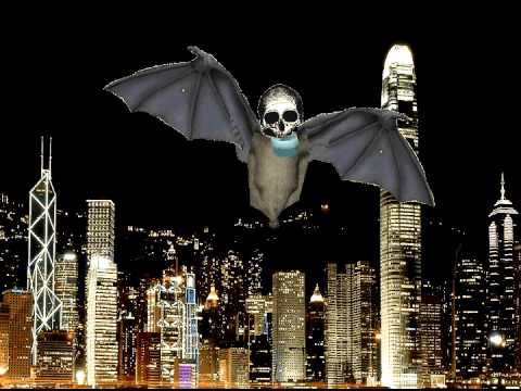 Animated skull Bat flying thumbnail