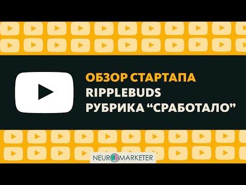 Обзор стартапа RippleBuds, почему сработало? Успешные стартапы