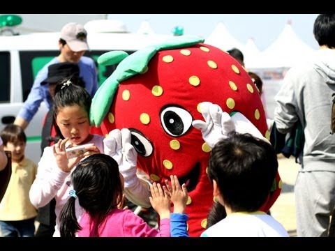 Follow Me Around: NONSAN Strawberry Festival