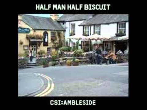 Half Man Half Biscuit - Little In The Way Of Sunshine
