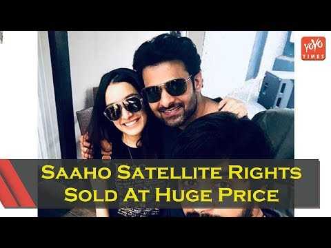 Saaho Satellite Rights Sold At Huge Price To This Channel | Shraddha Kapoor | YOYO Times