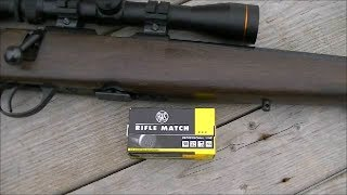 RWS Rifle Match .22 Ammo Review