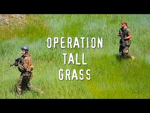 Image result for tall grass complaints
