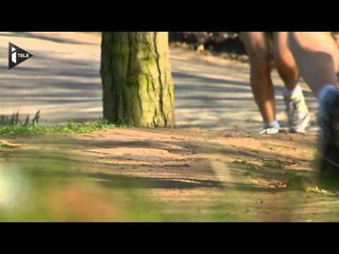 Paris : beau temps mais pollution de l'air élevée - Le 10/03/2014 à 19h00