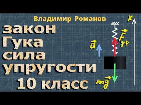 физика СИЛА УПРУГОСТИ закон Гука 10 класс формула
