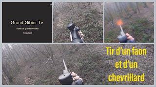 Battue Grand gibier - Tir d'un faon et d'un chevrillard - Janvier 2018