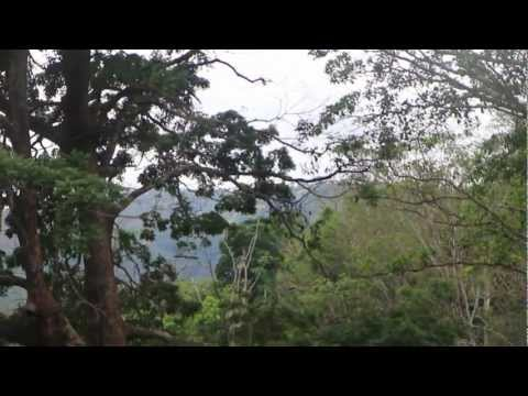 Follow Me Around Costa Rica