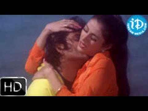 Aavida Maa Aavide Movie Songs - Omnamami Andamma Song - Nagarjuna...