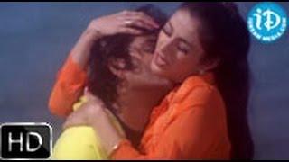 Om Namami Andamma Song - Aavida Maa Aavide Movie |  Nagarjuna | Tabu | Heera Raagopal