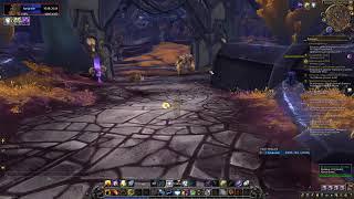 Играем в World of Warcraft Battle for Azeroth за Шамана