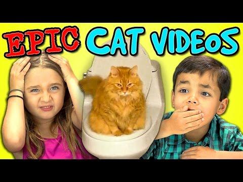 Kids React Bonus - Epic Cat Videos!