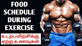 WORKOUT Food Schedule| Before and After | BENEFITS OF PROTEIN AND CARBOHYDRATE in tamil