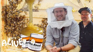 Brad Makes Honey | It's Alive | Bon Appétit