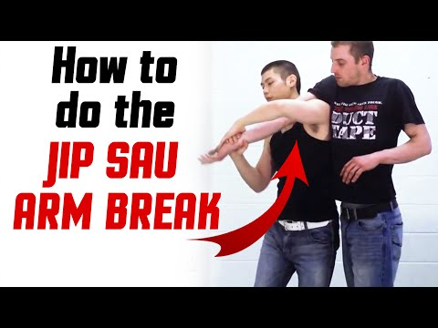 Wing Chun Techniques - Jip Sau Arm Break Image 1