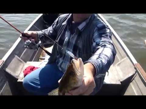 ловля рыбы кастмастером