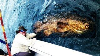 EPIC EXTREME FISHING - BIG MAN CATCHES BIG FISH - FISHING BIG FISH FLORIDA