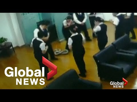 Giant python falls from ceiling in middle of bank meeting in China