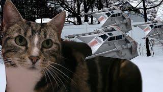 Cat Tales - Hoth