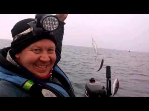 морская рыбалка новофедоровка