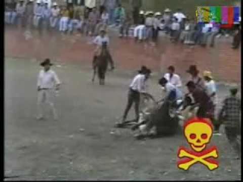 33 MUERTES (DEL JARIPEO) CANCION 21: 80 CARGAS SUICIDAS++