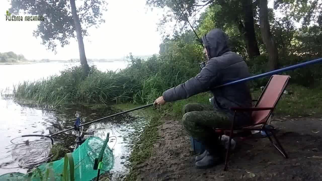 рыбалка киров на фидер