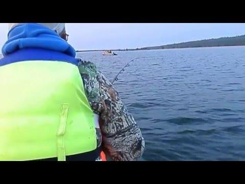 омулевая рыбалка