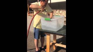MC VIET THAO- ICE BUCKET CHALLENGE THE SECOND TIME- AUGUST 22, 2014