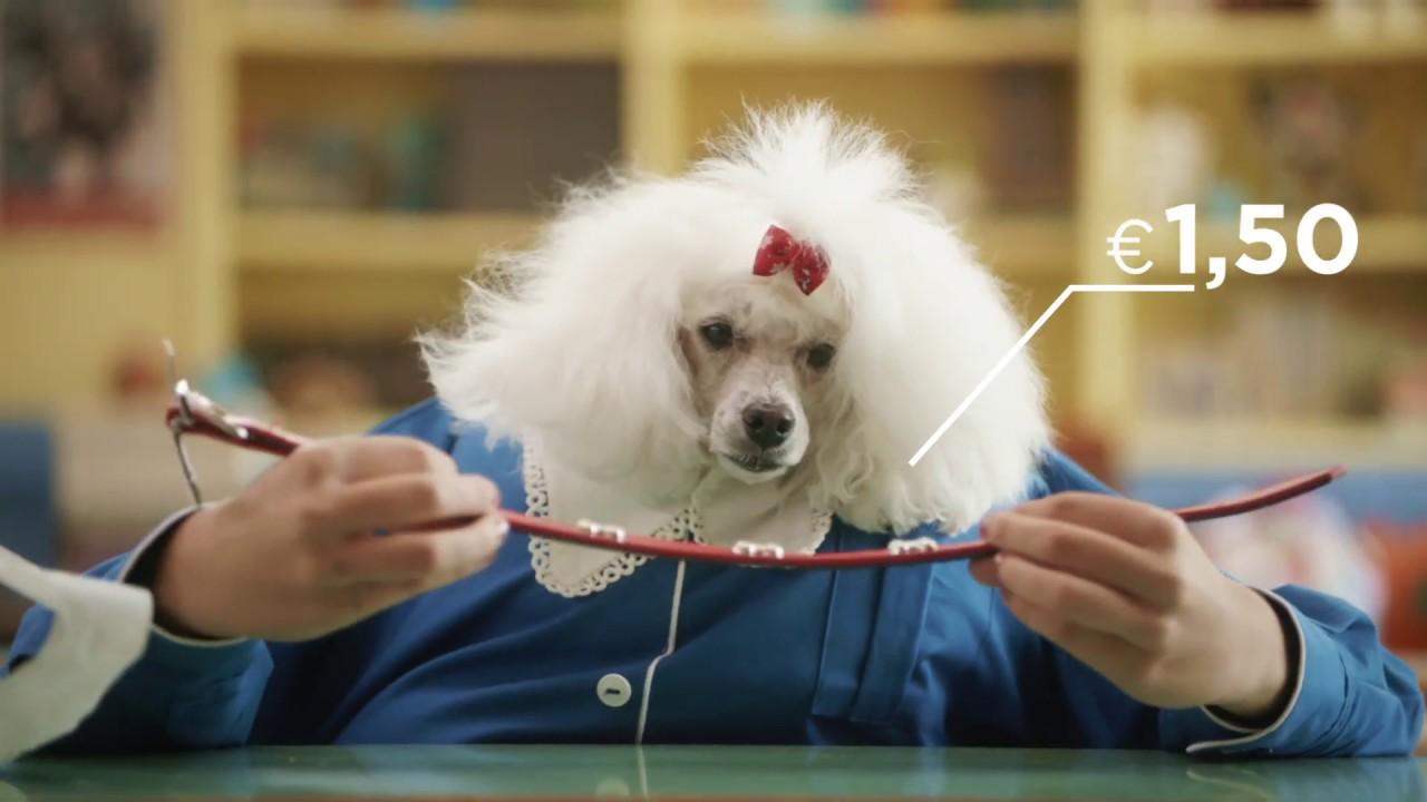Είδη Pet Shop