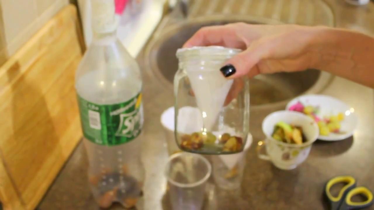 Мошки в кухне как избавиться в домашних условиях 200
