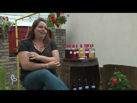 Ulog za profit ep. 45 - Žene preduzetnice, koziji sirevi, starinska srpska jela - 25.08.2020.