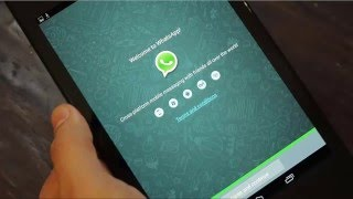 How to Delete Chat History on Android WhatsApp