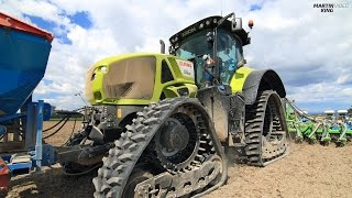 Strip-Till Sowing of Colza | CLAAS AXION 930 CMATIC