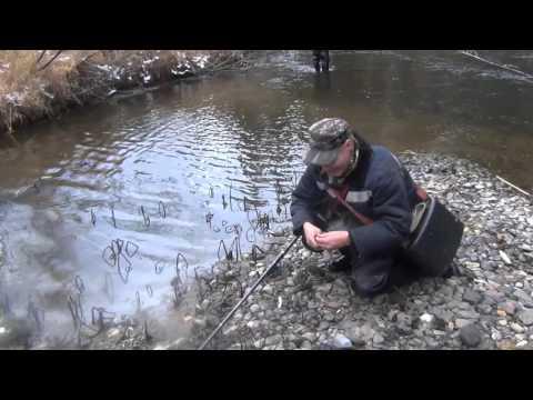 Хариус рыбалка на таежной речке / Таежная рыбалка / Даугли