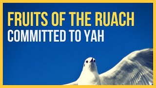 Fruits Of The Ruach (HEBREW ROOTS MUSIC)