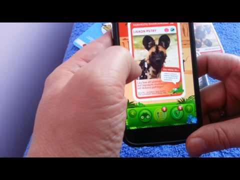 Biedronka Super Zwierzaki Na Telefon Android