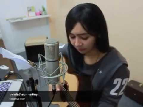 เพลง มหาลัยวัวชน - Cover วงพัทลุง