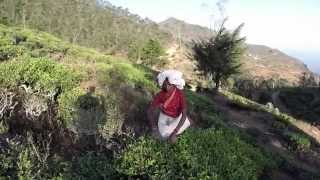 Sri Lanka HD | GoPro | 2014