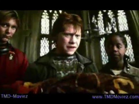 Harry And The Potters - Missing Arm Of Viktor Krum