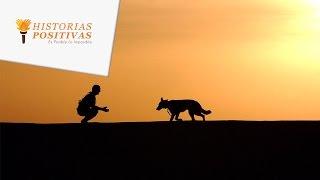 Cuando Sepas La Misión Espiritual De Los Perros Y Gatos Romperás A Llorar ¡HERMOSO!