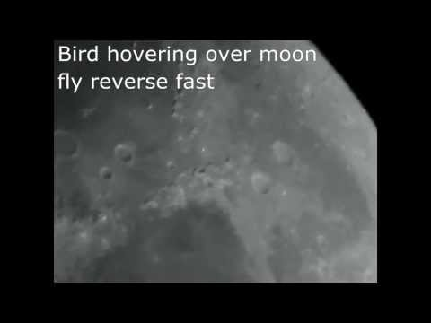 Objects flying over moon HD 720p
