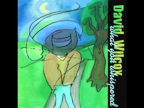 David Wilcox - When You